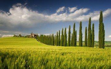 небо, облака, деревья, пейзаж, поле, дом, италия, кипарисы, кампанья