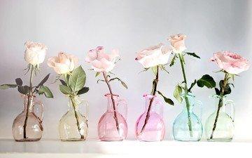 цветы, розы, разноцветные, стекло, вазы, кувшины