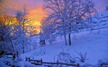 деревья, снег, природа, зима, забор, холм
