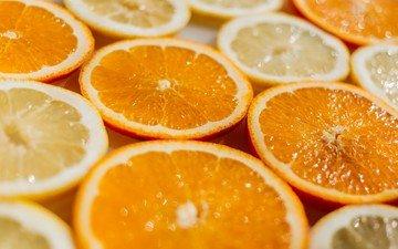 фрукты, апельсины, дольки, в, и, лимоны, цитрусы