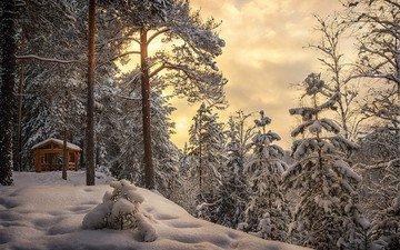 небо, облака, деревья, снег, лес, зима, беседка, сугробы