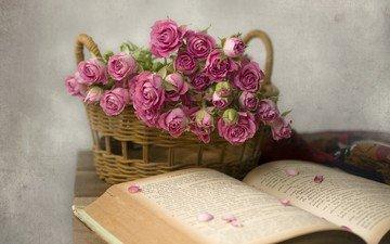цветы, розы, лепестки, букет, корзина, книга, и книга