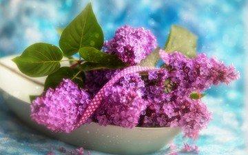 цветы, ветки, лента, букетик, сирень, боке, тесьма