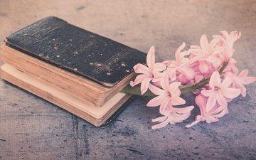 цветы, фон, ретро, веточка, книга, натюрморт, гиацинты, композиция
