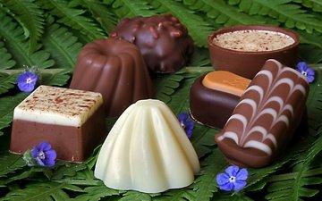 цветы, конфеты, лист, шоколад, сладкое
