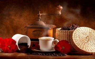 цветы, напиток, зерна, кофе, чашка, кофейные зерна, кофемолка