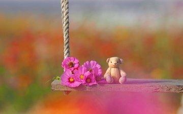 цветы, настроение, игрушка, качели, медвежонок, боке, космея, плюшевый мишка