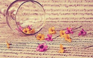 цветы, текстура, стиль, настроение, ноты, бокал