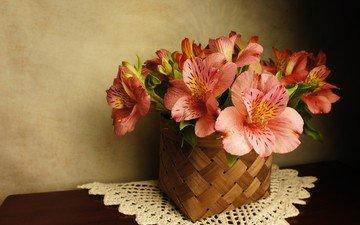 цветы, букет, салфетка, корзинка, альстромерия