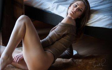 девушка, модель, ноги, киска, задница, сексуальная, джек рассел