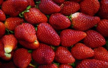 красная, клубника, спелая, ягоды
