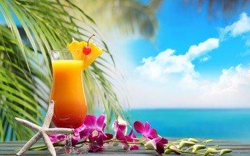 цветок, бокал, пальма, коктейль, экзотика, орхидея