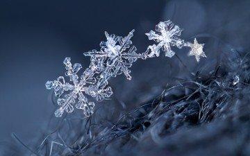 macro, snowflakes, background, snowflake, crystals
