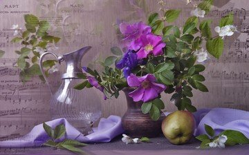 ветки, ноты, ткань, шиповник, яблоко, ваза, кувшин, натюрморт, жасмин