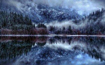 деревья, озеро, горы, снег, отражение, туман