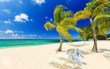 природа, море, песок, пляж, пальмы, гамак, ветер, лежаки, тропики