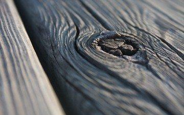 дерево, макро, фон, доска, поверхность, слои
