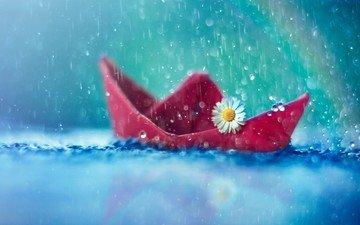 вода, капли, ромашка, дождь, кораблик, бумажный кораблик