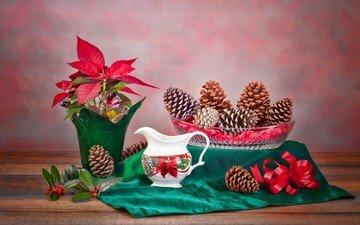 ткань, растение, ваза, шишки, кувшин, натюрморт, композиция, пуансеттия, рождественская звезда