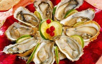 лайм, смородина, раковины, закуска, морепродукты, мидии, моллюски, устрицы