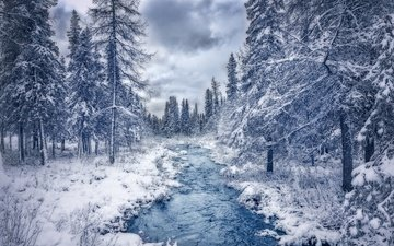 река, природа, лес, зима, ручей, канада, квебек