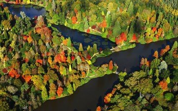 деревья, природа, лес, пейзаж, вид сверху, осень, англия, bing, сассекс, парк шеффилд