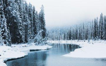 река, снег, природа, лес, зима, канада