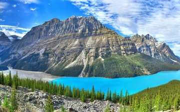 the sky, clouds, trees, lake, mountains, rocks, nature, stones, forest, landscape, panorama, canada, banff, banff national park, peyto