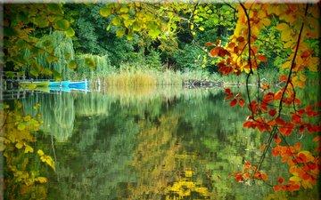 озеро, природа, лес, отражение, осень, лодки
