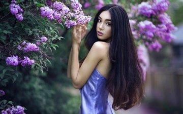 цветы, природа, цветение, девушка, платье, брюнетка, лето, модель, куст, сирень