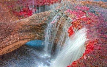 река, скалы, природа, водопад, колумбия, bing, серрания-де-ла-макарена, каньо-кристалес.