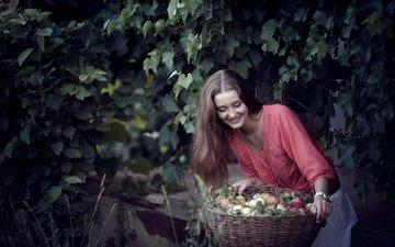 девушка, улыбка, яблоки, корзина
