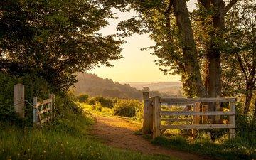 дорога, природа, парк, забор, the british countryside