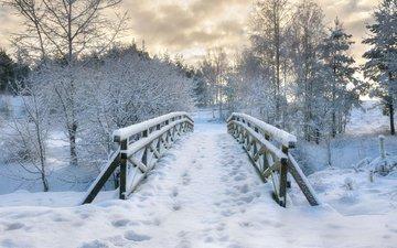 деревья, снег, природа, зима, мост, следы, польша