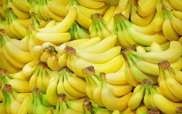 фрукты, много, плоды, бананы