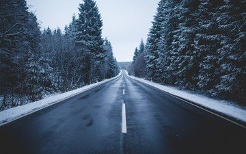 дорога, деревья, природа, зима