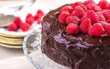 малина, ягоды, шоколад, сладкое, торт, десерт