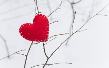 winter, branches, heart
