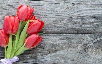 цветы, букет, тюльпаны, красные тюльпаны