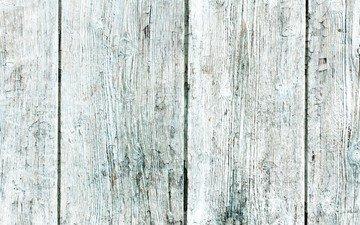 дерево, текстура, доски, белая, деревянная