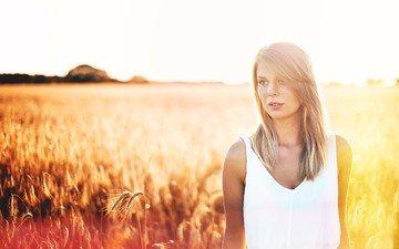 light, the sun, girl, blonde, field, look, hair, face, rye