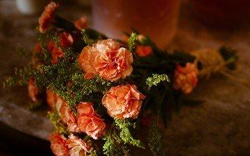 цветы, букет, натюрморт, гвоздики