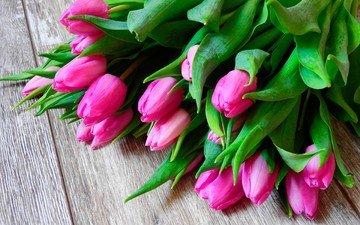 цветы, весна, букет, тюльпаны, розовые