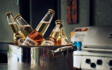 пиво, бутылки, алкоголь, кастрюля, corona