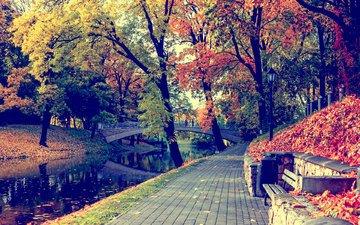 природа, парк, мост, осень, канал, скамейка