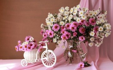 цветы, ткань, букет, кувшин, велосипед, натюрморт, занавеска, композиция, астры, кашпо