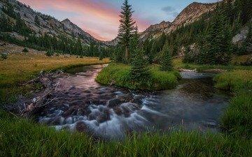 трава, река, горы, природа, лес, поток