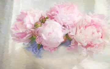 цветы, арт, рисунок, бутоны, фон, лепестки, букет, розовые, ваза, светлый, живопись, мазки, пионы, композиция, нежно, пастельные тона