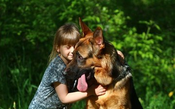 dog, girl, child, each, language, friendship, german shepherd, shepherd