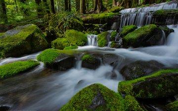 река, природа, камни, лес, водопад, мох